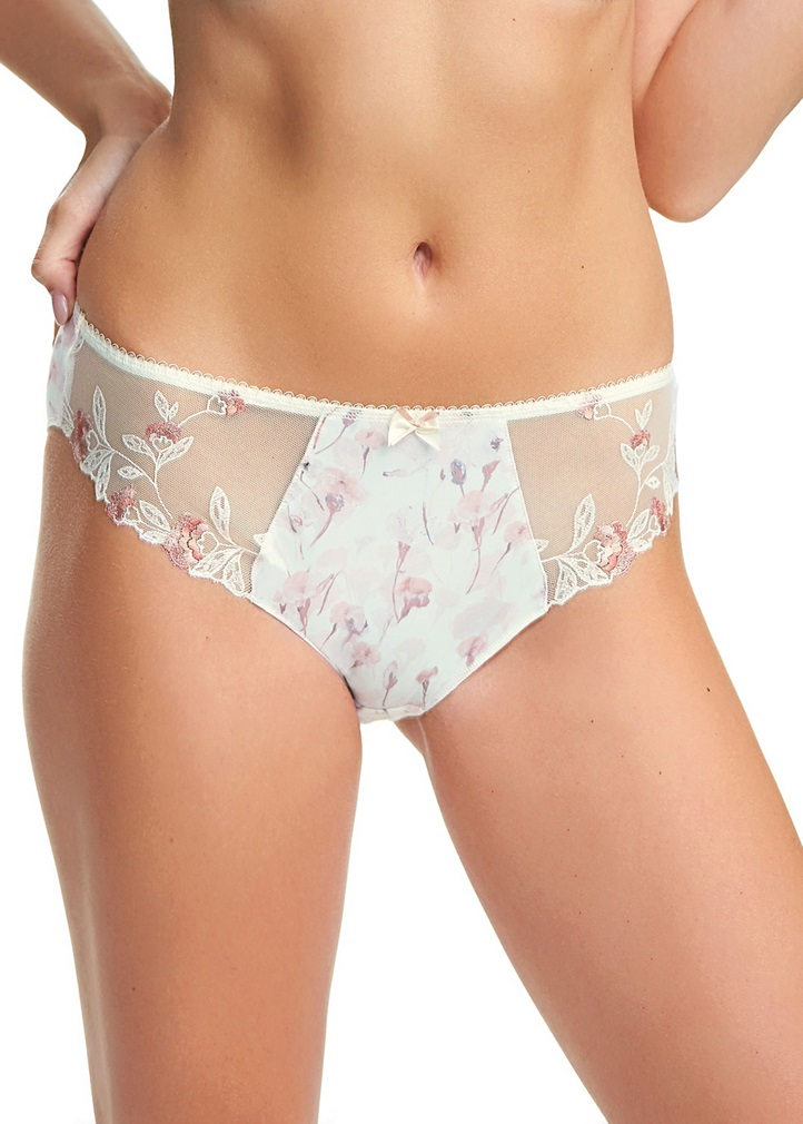 ALICIA Brief