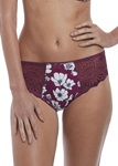 FANTASIE-OLIVIA-BLACK-CHERRY-BRIEF-KNICKER-LOCKER.jpg