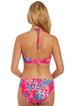 FREYA-SWIM-WILD-SUN-TROPICAL-PUNCH-SOFT-TRIANGLE-TOP-BACK-KNICKER-LOCKER.jpg