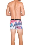 Waxx-snowfiction-boxer-short-back-Knicker-Locker.jpg