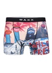Waxx-snowfiction-boxer-short-front-Knicker-Locker.jpg