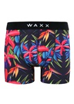 Waxx_Exotic_Boxer_shorts_Knicker_Locker.jpg